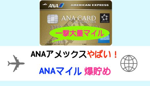 2020年12月ANAアメックスゴールドのキャンペーンでマイルを貯める|年会費高いのに新規申込みしました