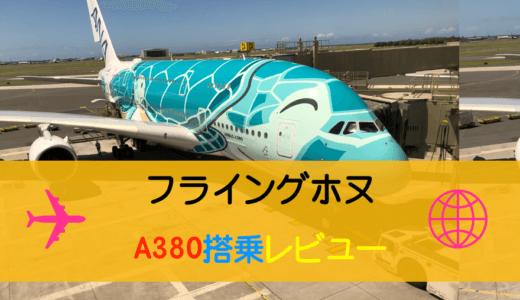 ANAハワイ往復A380フライングホヌのプレミアムエコノミー搭乗レビュー
